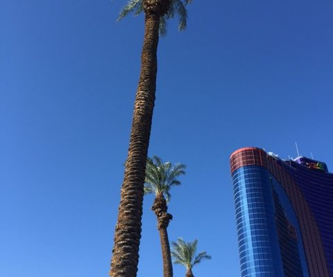 Lost in Las Vegas (just for 15 minutes, though, so it wasn't too scary)